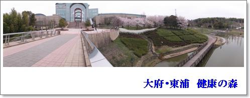 20120410 大府・東浦 健康の森 kjsネット通販.jpg