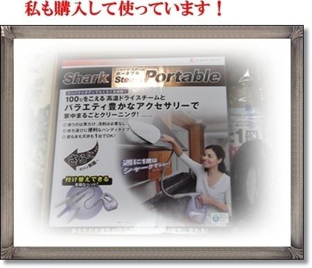 2012年2月19日シャークスチームポータブル 私も購入して使っています.JPG
