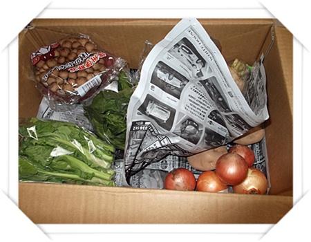 2012年2月28日らでぃっしゅぼーやの野菜が届きました3.JPG